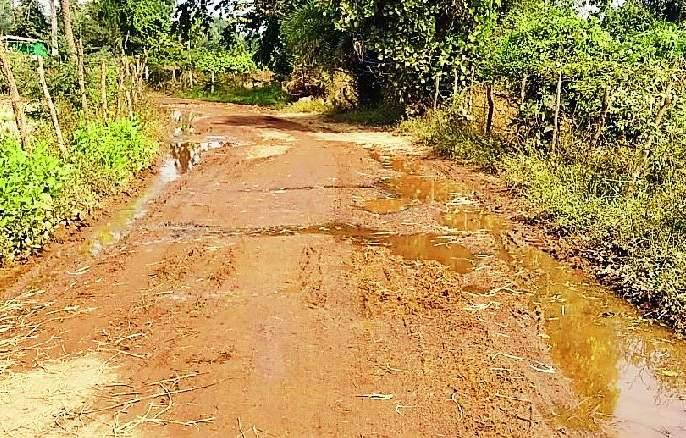 Water flows through the streets in Vairagada | वैरागडात रस्त्यावरून वाहते पाणी