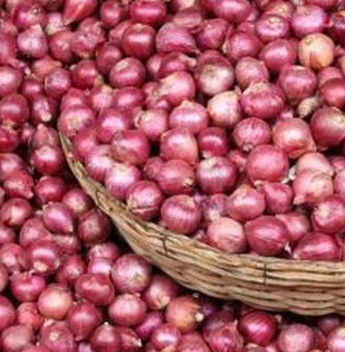Farmers' disappointment over onion prices goes up | कांदा दर वाढूनही शेतकऱ्यांच्या पदरी निराशाच