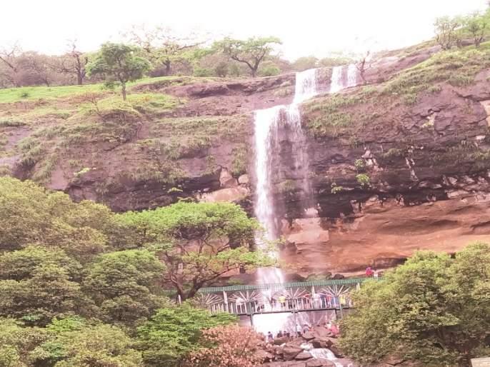 Tourist 'Weekend' in Bhandara : Waterfalls Attractions | भंडारद-यात पर्यटकांचा 'विकेंड' : फेसाळते धबधबे, फॉलचे आकर्षण