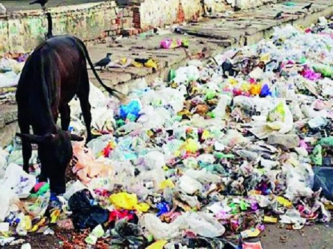 Use plastic bags everywhere even after the ban | बंदीनंतरही सर्वत्र प्लास्टिक पिशव्यांचा वापर