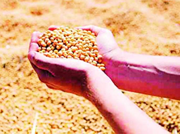 The price of the crop in the market committee is priceless   बाजार समितीतच पिकाला कवडीमोल भाव