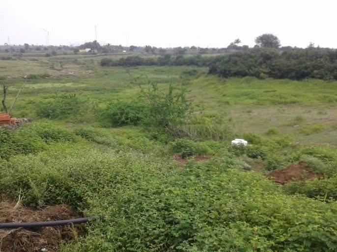 Varunaraja's Chukwacha in Ghatandre area | घाटनांद्रे परिसरामध्ये वरुणराजाचा चकवाच