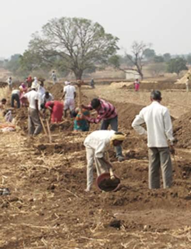 Four and a half thousand laborers worked on MGNREGA   साडेचार हजार मजूर मनरेगाच्या कामावर