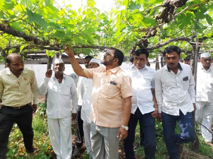 Farmers should get loan waiver: Raju Shetty   शेतकऱ्यांना सरसकट कर्जमाफी द्यावी : राजू शेट्टी