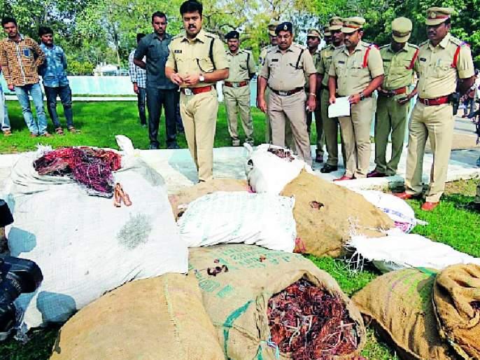Yavatmal thieves arrested in Adilabad | यवतमाळच्या चोरट्यांना आदिलाबादमध्ये अटक