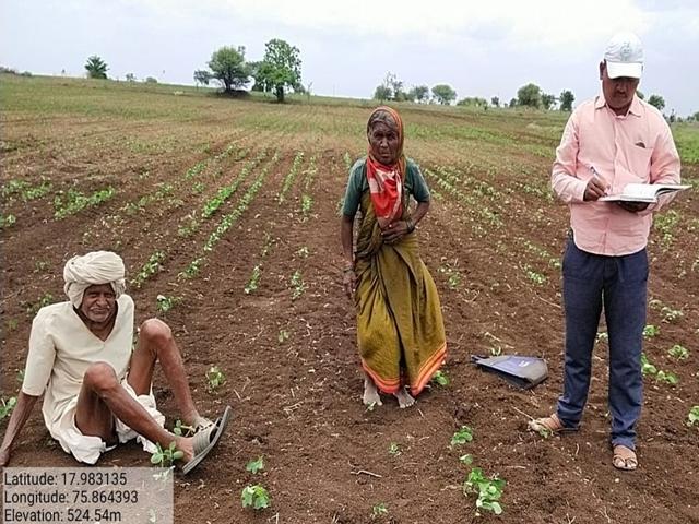 Lokmat Impact ... Agriculture officials reach 'farms doing 'double sowing' of solapur old ager farmer | लोकमत इम्पॅक्ट ! 'तो' व्हिडिओ पाहून आजी-आजोबांच्या शेतावर पोहोचले कृषी अधिकारी