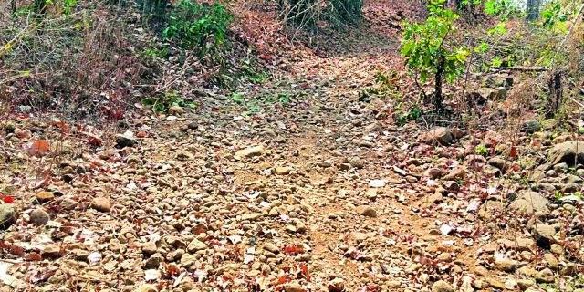 After 70 years Khadki Kollam got the road to Gudiya | ७० वर्षानंतर खडकी कोलाम गुड्याला मिळाला रस्ता
