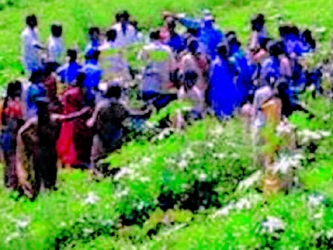 Farmers 'Growth for Farmers' Growth | शेतीच्या प्रगतीसाठी महिला शेतीशाळा