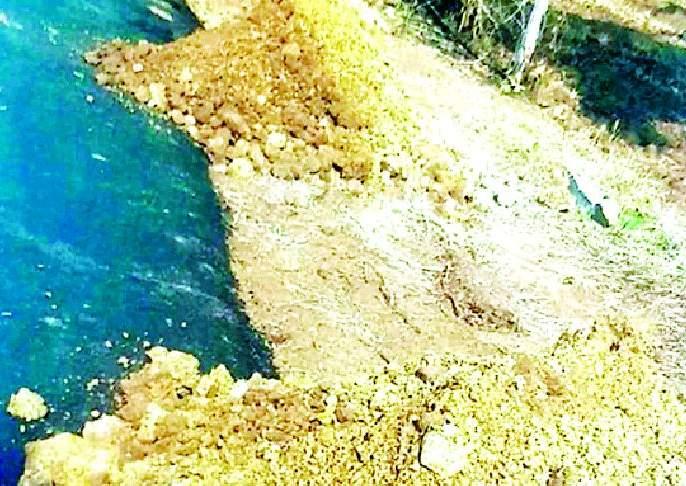 Use of Bhasi instead of Muru in road construction | रस्ता बांधकामात मुरुमाऐवजी भिसीचा वापर