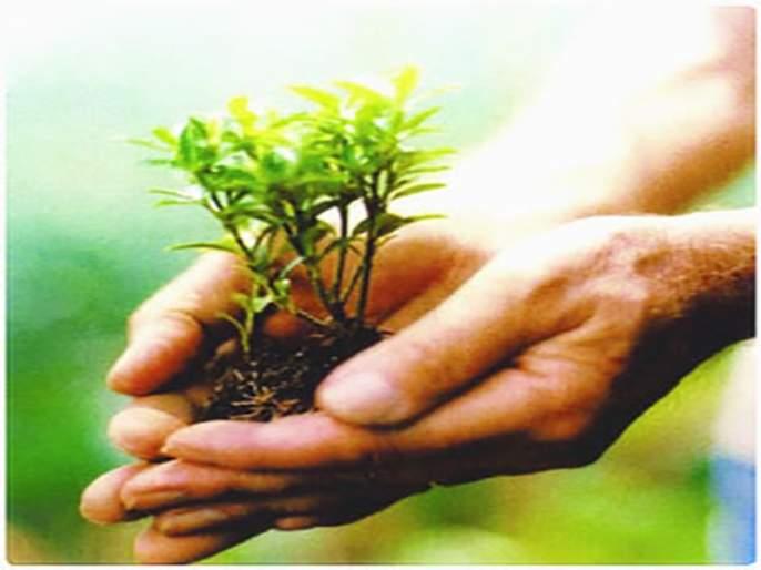 Due to drought, the Krishi Mahotsav cancels canceled   दुष्काळामुळे कृषी महोत्सव रद्द