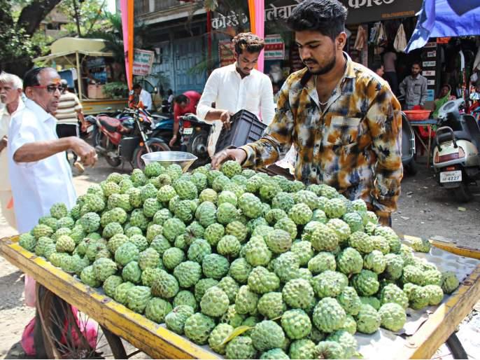 Coconut prices on the face of Diwali: Tomatoes, banana prices increased | दिवाळीच्या तोंडावर खोबरे महागले: टोमॅटो, केळीचे दर वाढले
