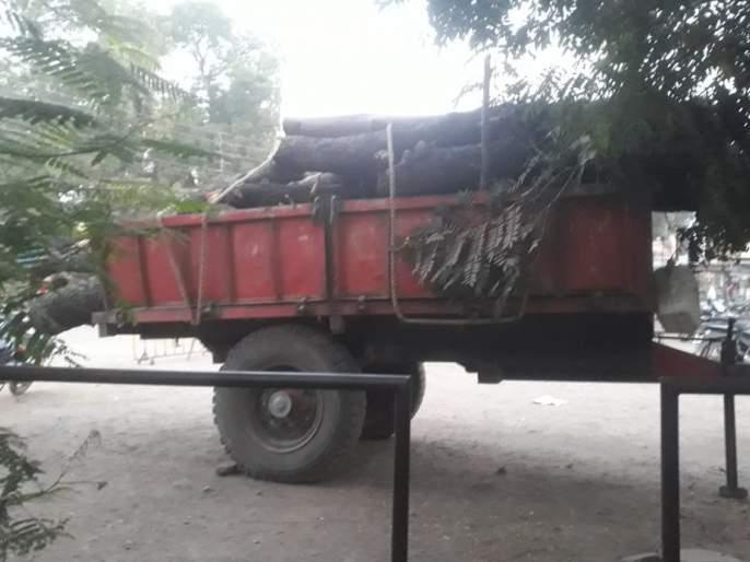 Illegal tree looting on Kolgaon-Gudi road | कोळगाव-गुढे रस्त्यावर अवैध वृक्षतोडप्रकरणी गुन्हा