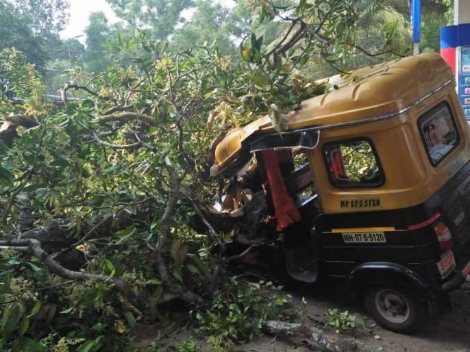The tree fell on the ground: both of them rescued Balbala | काळ आला होता पण...,रिक्षावर झाडाची फांदी कोसळली : दोघेजण बालंबाल बचावले