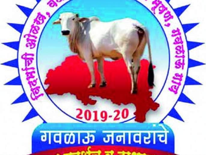 Cattle show, competition at Morangana | मोरांगणा येथे गवळाऊ जनावरांचे प्रदर्शन, स्पर्धा