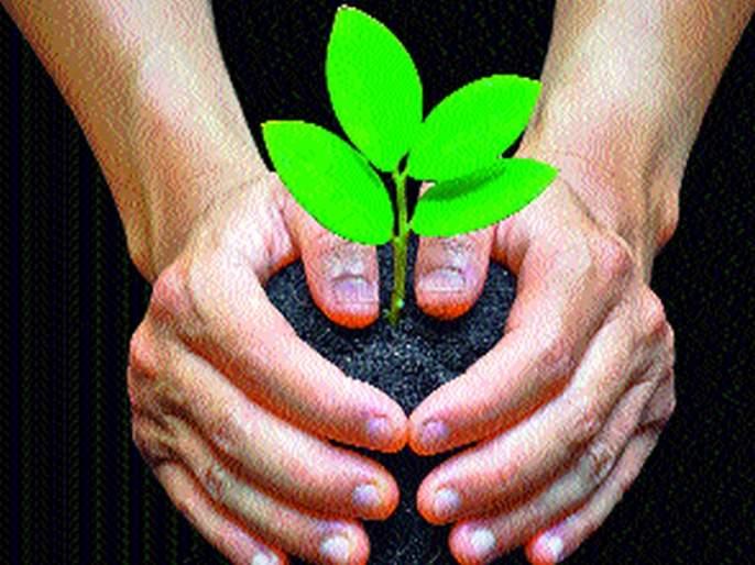 Nashik advance in tree plantation | वृक्षलागवडीत नाशिक अग्रेसर