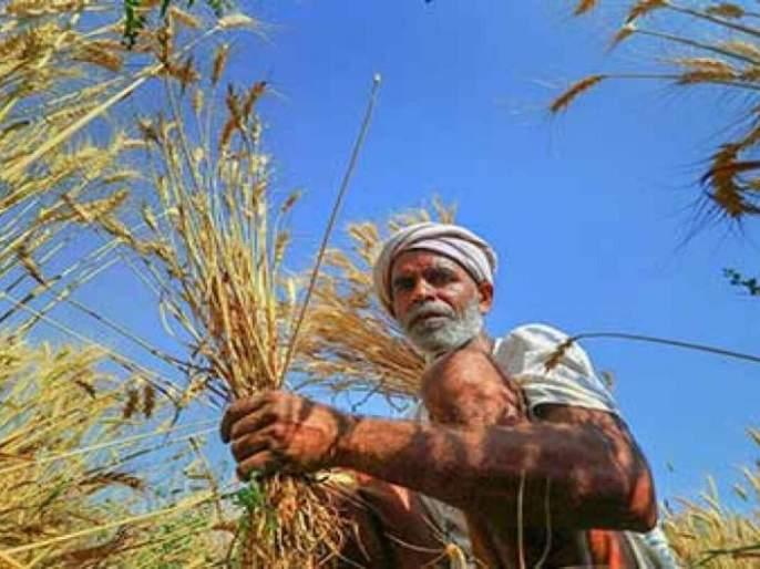 Tell PM ... How can farmers' incomes will double? | सांगा पीएम साहेब...! शेतकऱ्यांचे उत्पन्न दुप्पट कसे होणार?