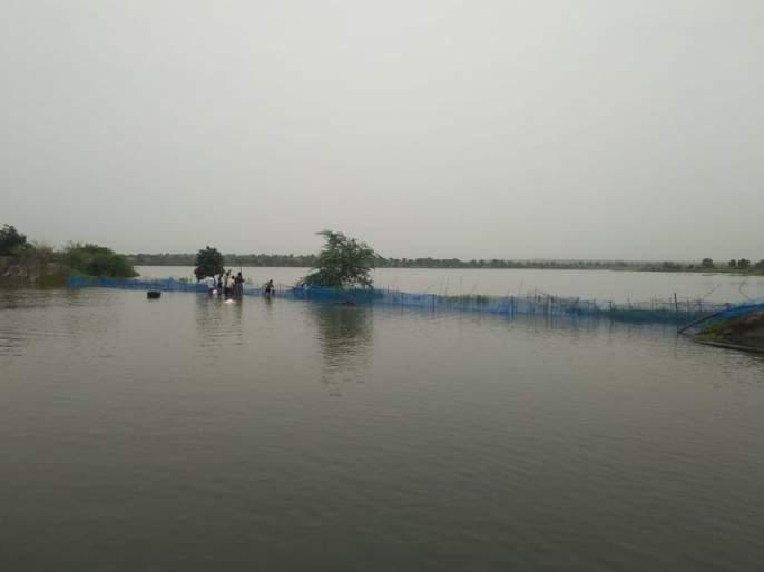 Murdapur dam starts flowing ...   मुर्दापूर धरण ओसंडून वाहू लागले...
