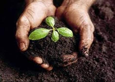 Free soil testing of four thousand farmers ... | चार हजार शेतकऱ्यांचे मोफत माती परीक्षण...