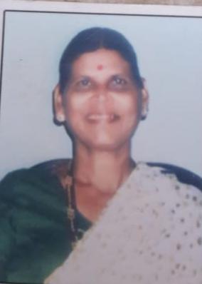 My - Leka's death due to electric shock | विजेचा शॉक लागून माय- लेकाचा मृत्यू