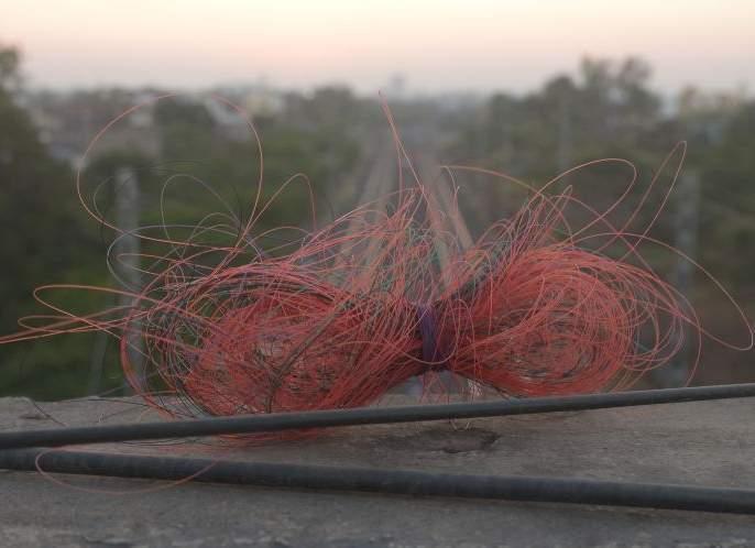 How is it that nylon treads are sold when they are banned? High Court | बंदी असताना नायलाॅन मांजा विकला जाताेच कसा?उच्च न्यायालयाचे खडेबाेल