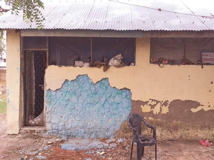 Bhangar police colony surrounded by the villagers | बाभळींनी वेढली भिंगार पोलीस कॉलनी