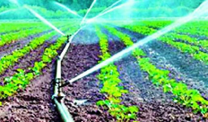 Farmers suicidal: 11 cases pending for rehabilitation   शेतकरी आत्महत्येची ११ प्रकरणे फेरचौकशीसाठी प्रलंबित