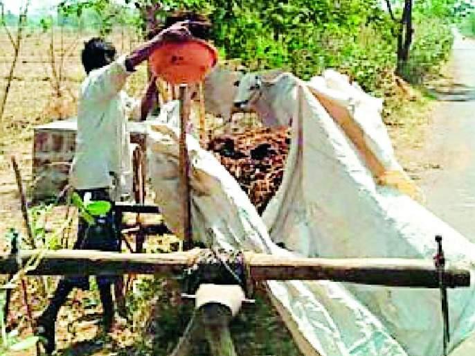 Speed of pre-farmer cultivation | खरीपपूर्व शेती मशागतीला वेग
