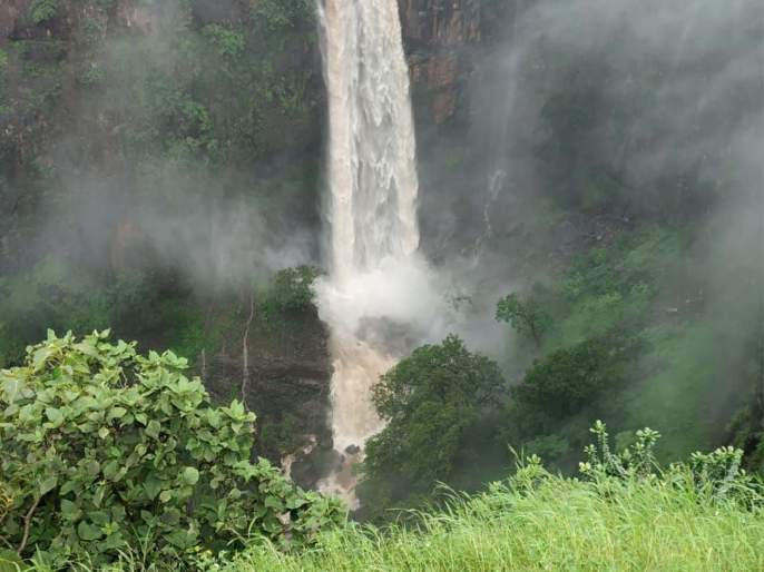 Tourists enjoy plundering even in the rain   धो-धो पावसातही तोरणमाळला पर्यटकांनी लुटला आनंद