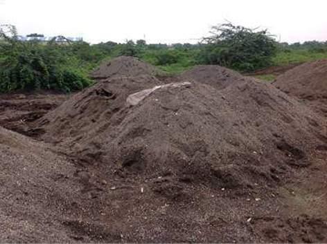 Parbhani: One arrested for sand theft case | परभणी : वाळू चोरी प्रकरणी एकास अटक