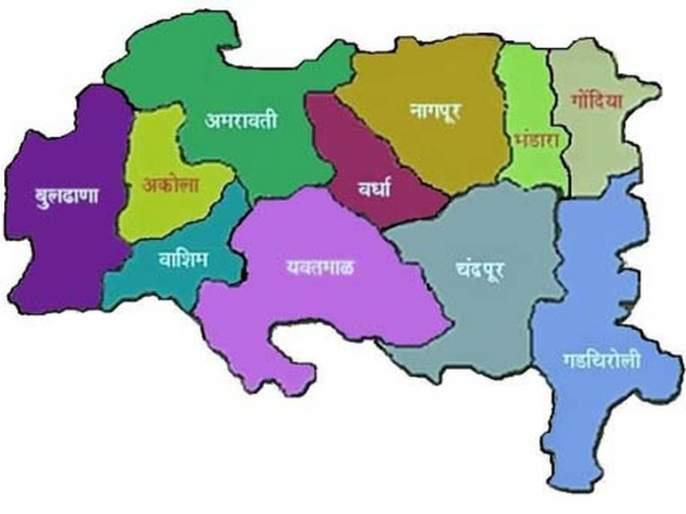 Vidarbha aggressor on the edge of Lok Sabha elections | लोकसभा निवडणुकीच्या तोंडावर विदर्भवादी आक्रमक