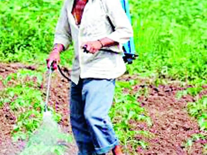 Poisoning of 20 farmers and farm laborers | २० शेतकरी-शेतमजुरांना विषबाधा