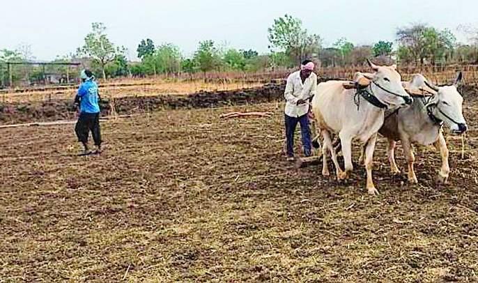 Sowing can be avoided due to rain | पावसाअभावी पेरण्या खोळंबल्या