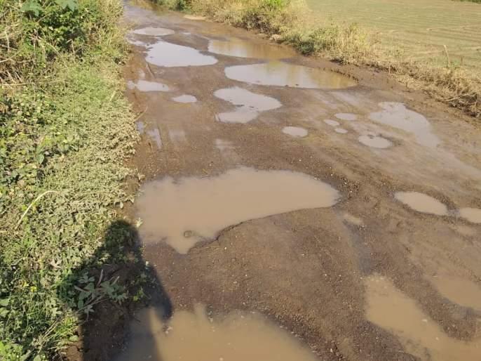 The main road to Virgaon awaits repairs | विरगावचा मुख्य रस्ता दुरुस्तीच्या प्रतीक्षेत