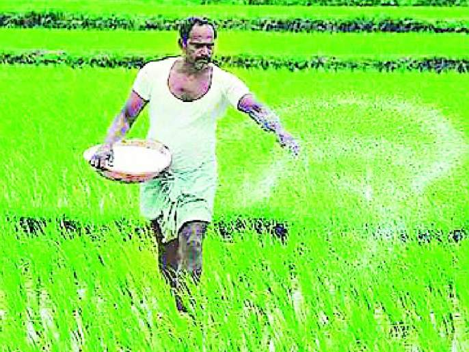 Use of 44 thousand metric tons of chemical fertilizers   ४४ हजार मेट्रिक टन रासायनिक खतांचा वापर