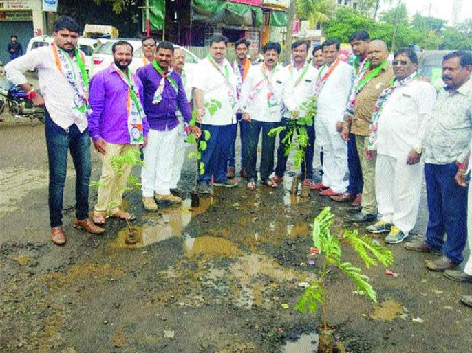 Planting trees in a pit in Satpur   सातपूरला खड्ड्यात वृक्षारोपण