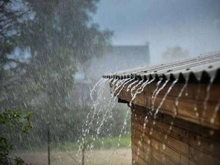 Low rainfall in four districts of Vidarbha; 18 percent plus rain in the maharashtra | महाराष्ट्रात सरासरीपेक्षा १८ टक्के अधिक पाऊस; विदर्भातील चार जिल्ह्यात दमदार पावसाची प्रतीक्षा