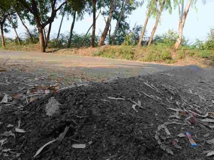 Mehun Chowpatty builds speed barrier | मेहरुण चौपाटीवर उभारले गतिरोधक