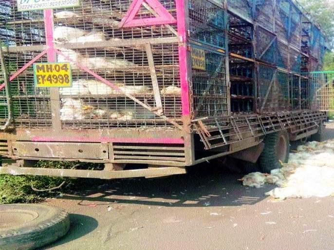 Three henchmen died after overturning truck | ट्रक उलटून ४०० कोंबड्या मृत्युमुखी