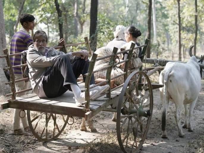 Amitabh Bachchan gave memories to the villages   अमिताभ बच्चन यांनी गावाकडील आठवणींना दिला उजाळा