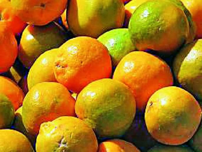 Vidarbha's orange process will be beneficial | विदर्भातील संत्र्याला प्रक्रियेचा होणार फायदा