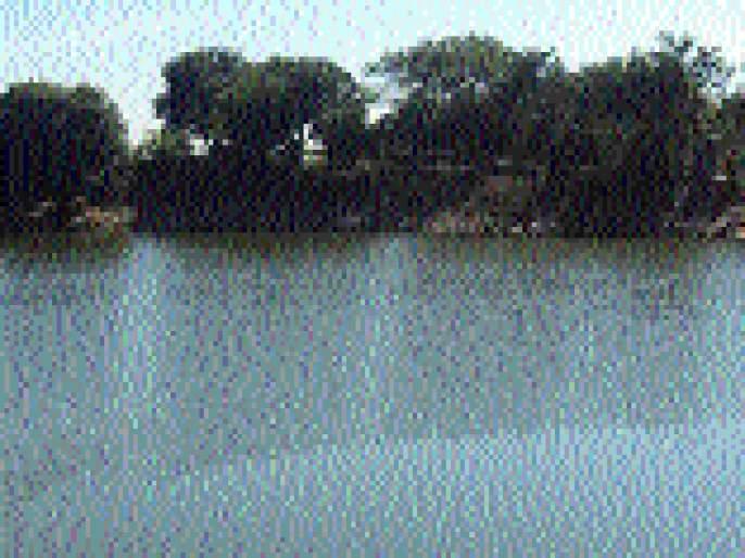 Action will be taken against Godavari river water users | गोदावरी नदीपात्रातील पाणीउपसा करणाऱ्यांवर होणार कारवाई