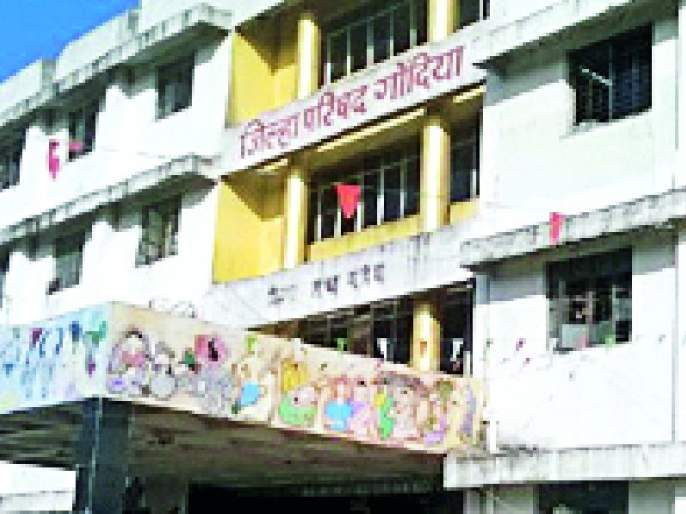 Work for the organization, waiving the right to the Gram Panchayat | ग्रामपंचायतचा अधिकार डावलून संस्थेला काम