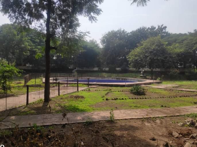 The final phase of the work of the music fountain in 'Sambhaji' park | 'संभाजी' उद्यानातील संगीत कारंजांचे काम अंतिम टप्प्यात