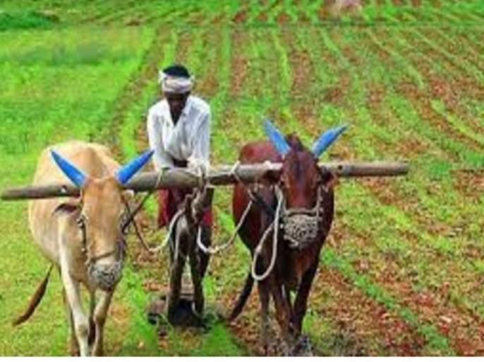 Loan waiver benefits to 3 thousand 5 farmers in Dhule district | धुळे जिल्ह्यातील ७६ हजार ४१८ शेतकऱ्यांना कर्जमाफीचा लाभ