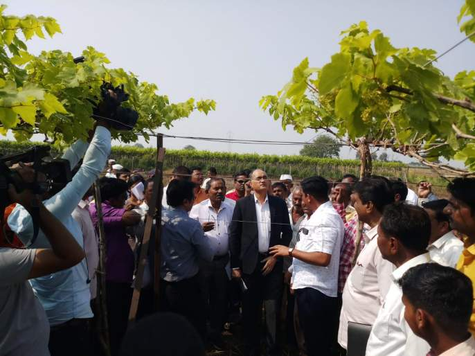 The officials were shocked to hear the farmers' agony! | शेतकऱ्यांच्या व्यथा ऐकून अधिकारीही हेलावले !