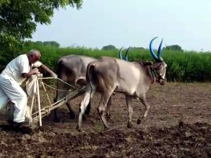 Three lakh hectare area is proposed to be acquired in Parbhani district | परभणी जिल्ह्यात पावणे तीन लाख हेक्टर क्षेत्र प्रस्तावित