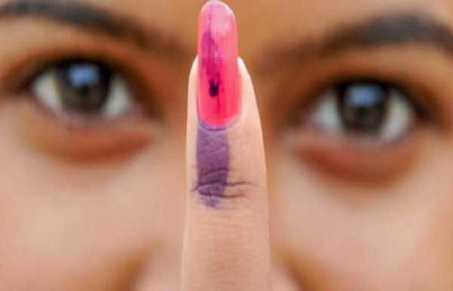 BJP candidate's disappointment for voters:   मतदारांतील उदासीनतेचा भाजप उमेदवाराला लाभ