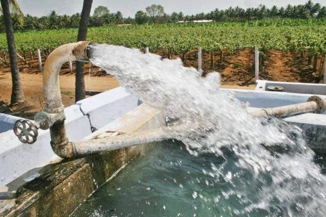 Irrigation projects in Vidarbha cost Rs 18 thousand crores | विदर्भातील सिंचन प्रकल्पांवर पाच वर्षांत१८ हजार ५५३ कोटी खर्च