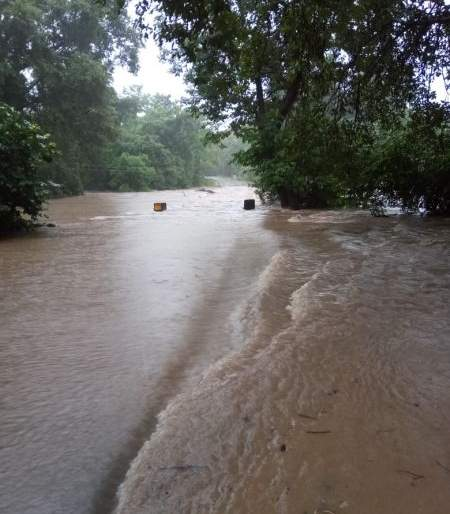 Heavy rains in Gadchiroli district; Hundreds of villages lost contact | गडचिरोली जिल्ह्यात मुसळधार पाऊस; शेकडो गावांचा संपर्क तुटला