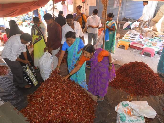 Red Chilli Rate: The crowd grew for the purchase   लाल मिरचीचा दर आवाक्यात: खरेदीसाठी गर्दी वाढली